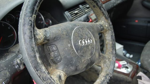 audi covered in mold explains why you can 39 t ignore water damage 9th generation honda civic forum. Black Bedroom Furniture Sets. Home Design Ideas