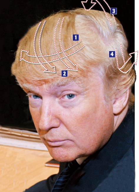 Donald Trump Hair Images & Pictures - Becuo